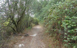 caminhada gruta olelas almargem do bispo gruta caminhando-5