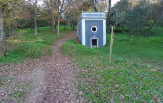 caminhada parques jardins conchas lilases caminhando-10
