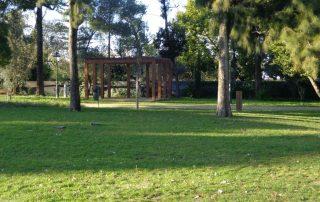 caminhada parques jardins conchas lilases caminhando-16