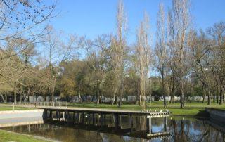 caminhada parques jardins conchas lilases caminhando-21