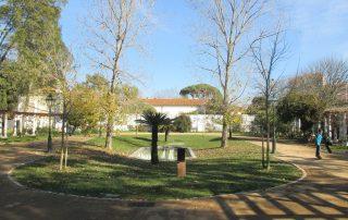 caminhada parques jardins conchas lilases caminhando-23