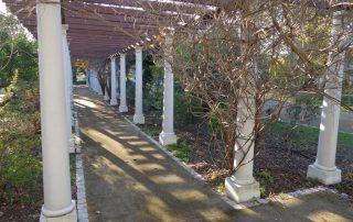 caminhada parques jardins conchas lilases caminhando-24