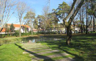 caminhada parques jardins conchas lilases caminhando-5
