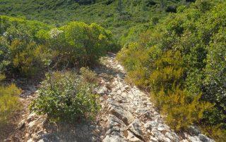 caminhada serra da arrabida setubal caminhando.4