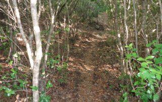 caminhada serra da arrabida setubal caminhando.8