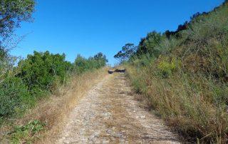 caminhada serra louro gaiteiros palmela arrabida caminhando 13