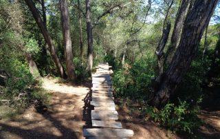 caminhada serra louro gaiteiros palmela arrabida caminhando 14