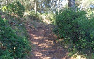 caminhada serra louro gaiteiros palmela arrabida caminhando 3