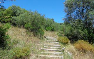 caminhada serra louro gaiteiros palmela arrabida caminhando 8