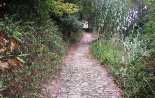 caminhada serra sintra penedo capuchos caminhando-19