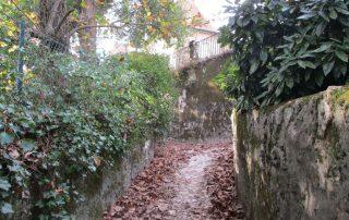 caminhada serra sintra santa eufemia regaleira seteais castelo dos mouros caminhando-17