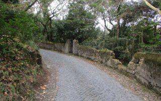caminhada serra sintra santa eufemia regaleira seteais castelo dos mouros caminhando-19