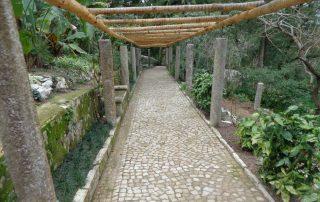 caminhada serra sintra santa eufemia regaleira seteais castelo dos mouros caminhando-31