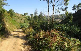 caminhada vale rio cuco sobreiro mafra caminhando 11
