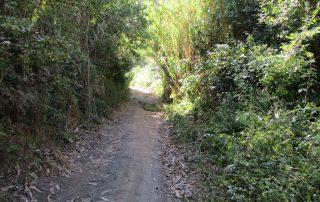 caminhada vale rio cuco sobreiro mafra caminhando 6