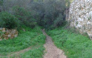 visita convento da arrabida setubal gruta santa margarida caminhando-8