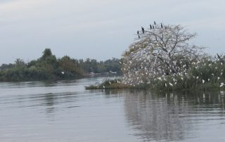 passeio barco escaroupim avieiros caminhando 4