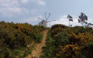 caminhada termas dos cucos azenhas torres vedras caminhando-11