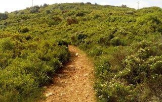 caminhada termas dos cucos azenhas torres vedras caminhando-13