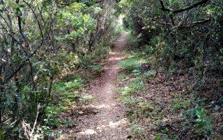 caminhada termas dos cucos azenhas torres vedras caminhando-15