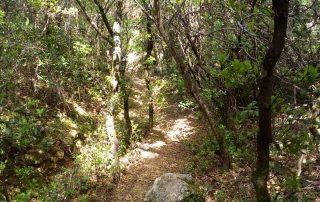 caminhada termas dos cucos azenhas torres vedras caminhando-6