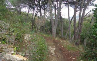 caminhada aldeia broas terrugem caminhando-16