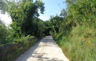 caminhada aldeias oeste merceana galega gavinha caminhando-7