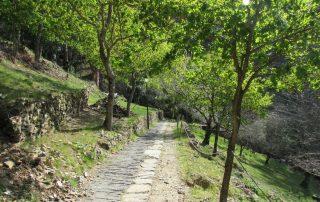caminhada aldeias xisto lousa caminhando 17