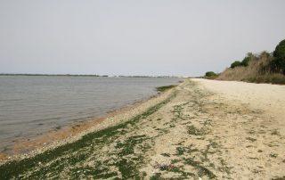 caminhada moita praia gaio rosario caminhando 16