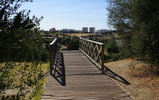caminhada parques jardins lisboa caminhando-10