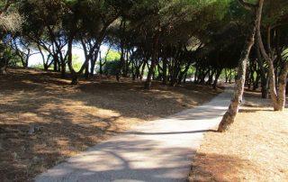 caminhada parques jardins lisboa caminhando-7