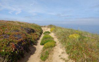 caminhada praia meco sesimbra caminhando-11