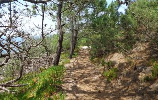 caminhada praia meco sesimbra caminhando-17