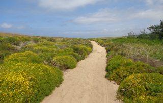 caminhada praia meco sesimbra caminhando-18
