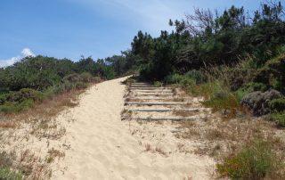 caminhada praia meco sesimbra caminhando-2