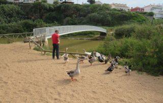 caminhada praia sao lourenco assenta caminhando 4