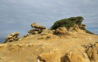 caminhada praia sao lourenco assenta caminhando 7
