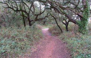 caminhada vale comenda serra arrabida setubal caminhando-15