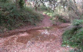 caminhada vale comenda serra arrabida setubal caminhando-16