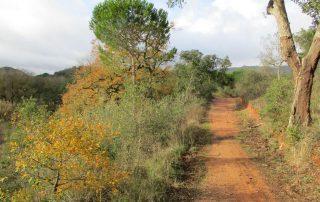 caminhada vale comenda serra arrabida setubal caminhando-18