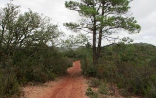 caminhada vale comenda serra arrabida setubal caminhando-2