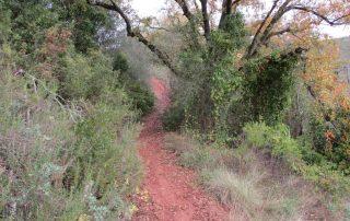 caminhada vale comenda serra arrabida setubal caminhando-6