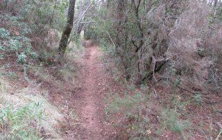 caminhada vale comenda serra arrabida setubal caminhando-7