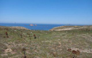passeio barco visita ilha berlengas caminhando-15