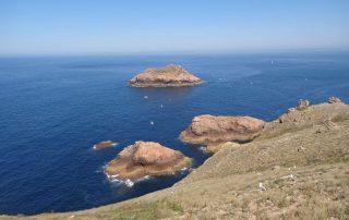 passeio barco visita ilha berlengas caminhando-8