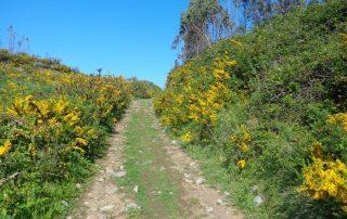 caminhada alqueidao sobral monte agraco caminhando 19