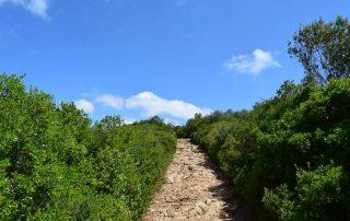 caminhada belas serra carregueira sintra caminhando-17