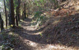 caminhada belas serra carregueira sintra caminhando-8