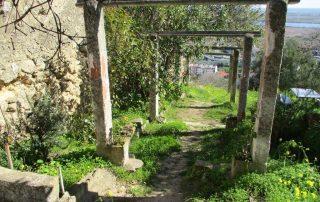 caminhada castanheira povos vfxira caminhando-14