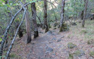 caminhada lago sanabria caminhando-44